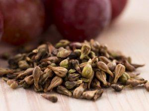 องค์ประกอบของยาลดน้ำหนัก Garcinia Extract Plus — สารสกัดจาก Grape Seed