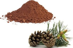 องค์ประกอบของยาลดน้ำหนัก Garcinia Extract Plus — Pine Bark Extract