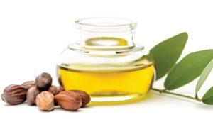 ส่วนผสม Cream Goji — Jojoba Oil